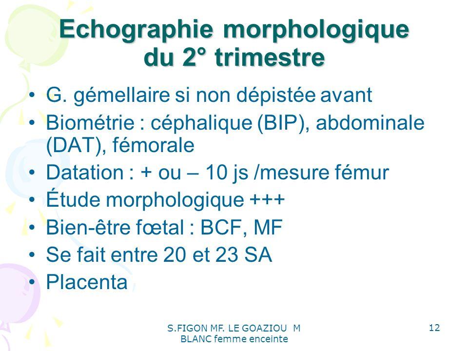 Echographie morphologique du 2° trimestre