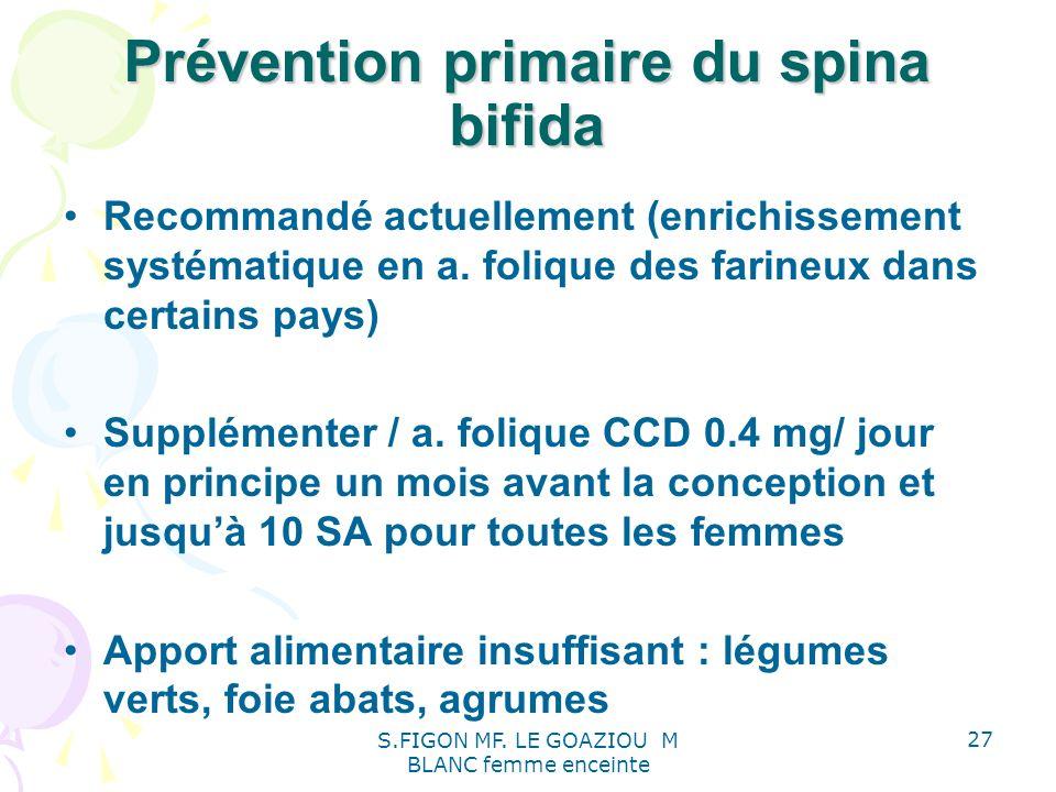 Prévention primaire du spina bifida