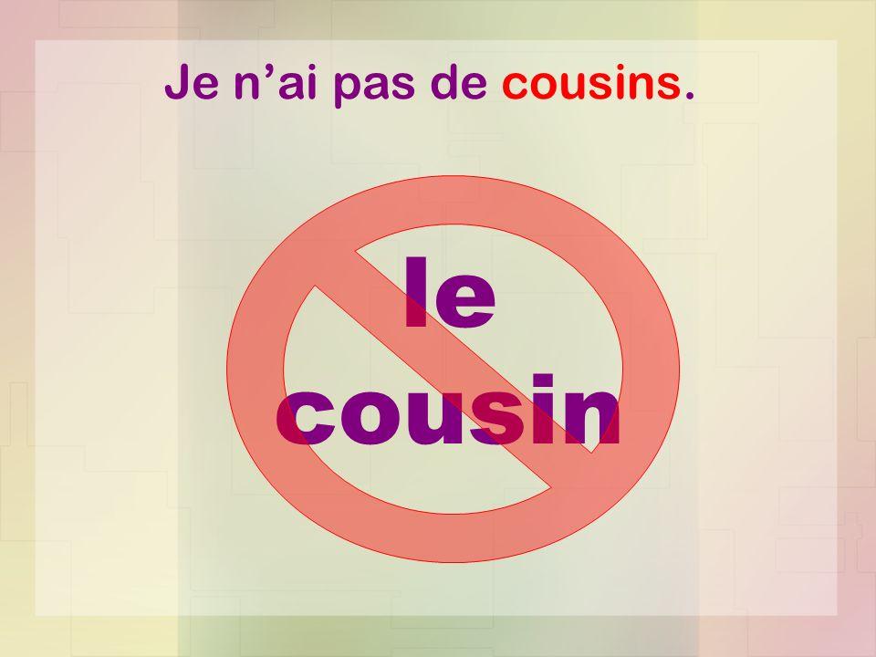Je n'ai pas de cousins. le cousin