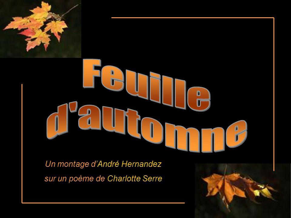 Feuille d automne Un montage d'André Hernandez