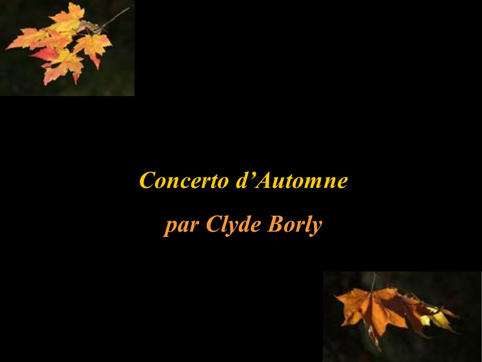 Concerto d'Automne par Clyde Borly
