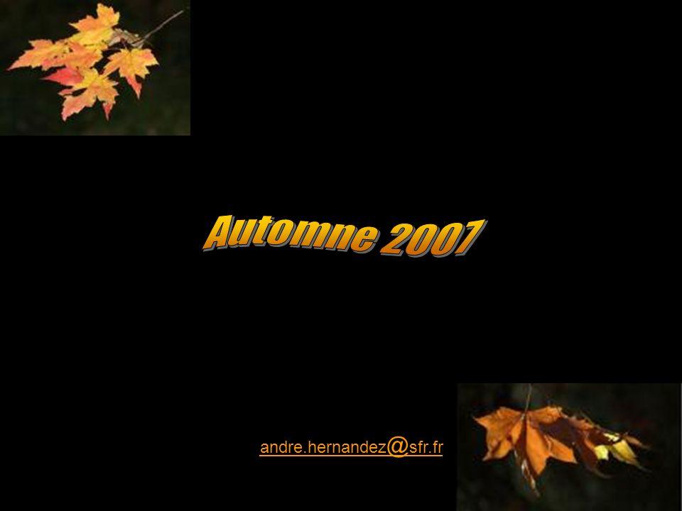 Automne 2007 andre.hernandez@sfr.fr