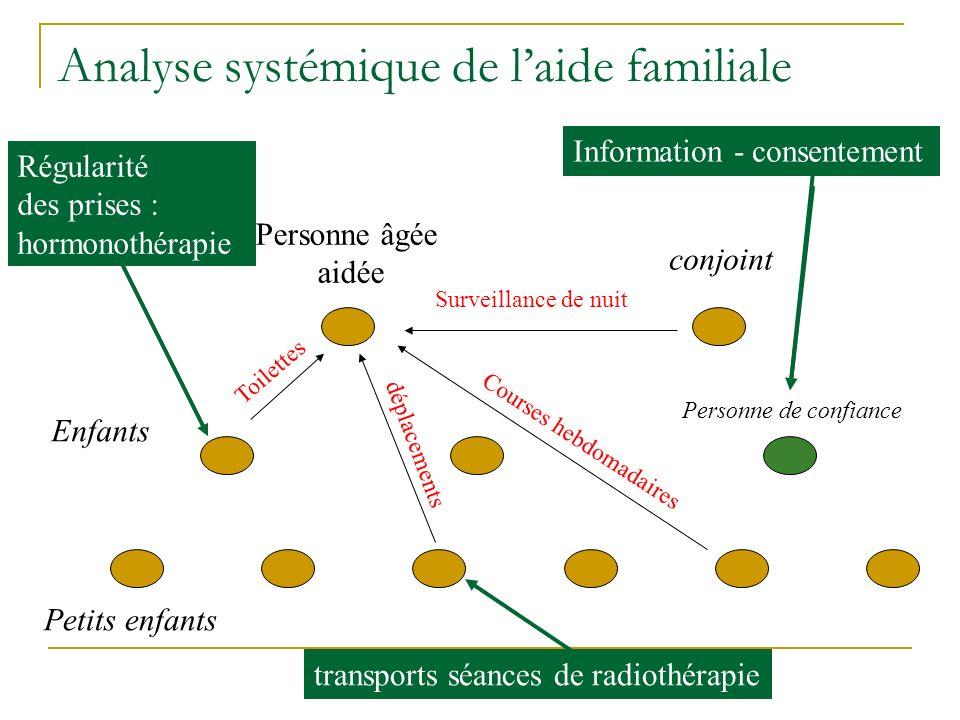 Analyse systémique de l'aide familiale