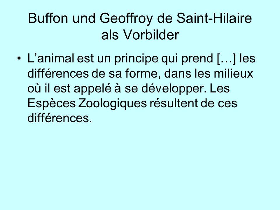 Buffon und Geoffroy de Saint-Hilaire als Vorbilder