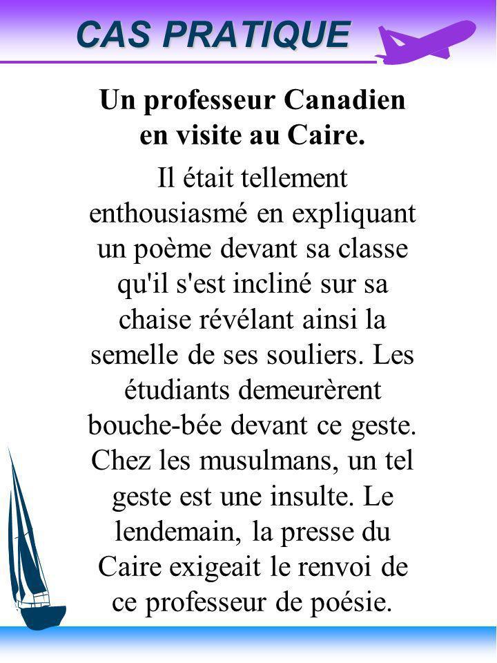Un professeur Canadien en visite au Caire.