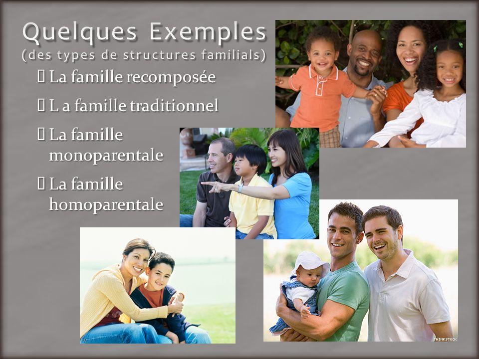 Quelques Exemples (des types de structures familials)