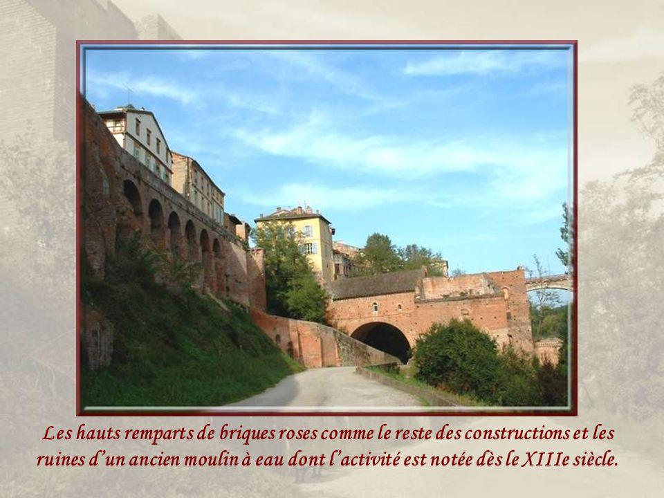 Les hauts remparts de briques roses comme le reste des constructions et les ruines d'un ancien moulin à eau dont l'activité est notée dès le XIIIe siècle.
