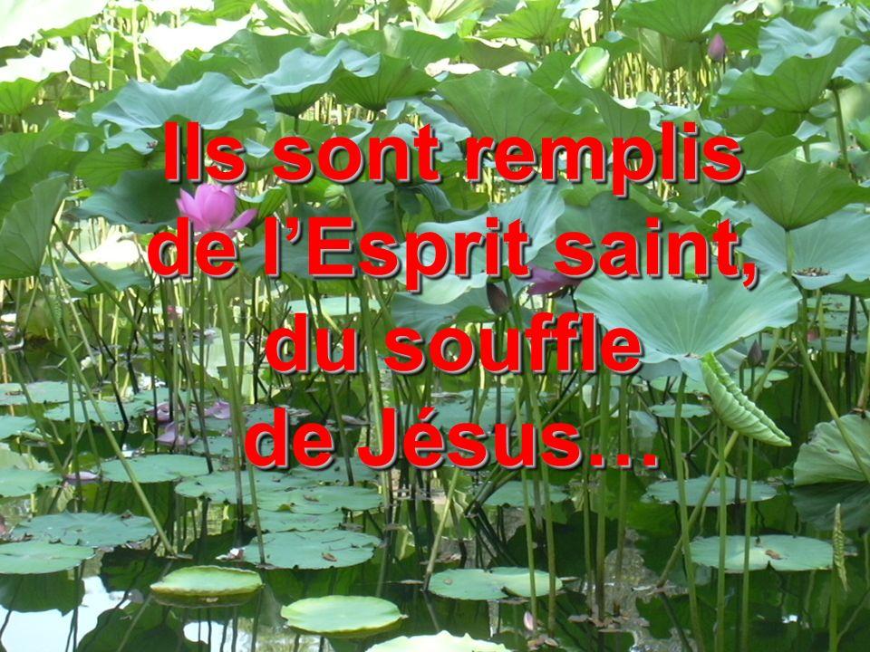 Ils sont remplis de l'Esprit saint, du souffle de Jésus…
