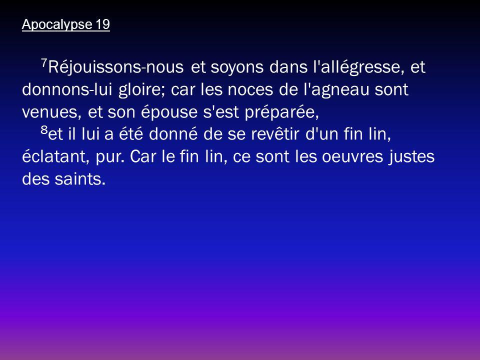 Apocalypse 19