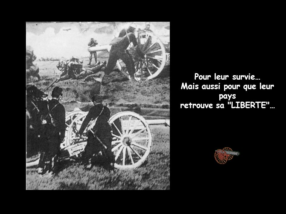 Pour leur survie… Mais aussi pour que leur pays retrouve sa LIBERTE …