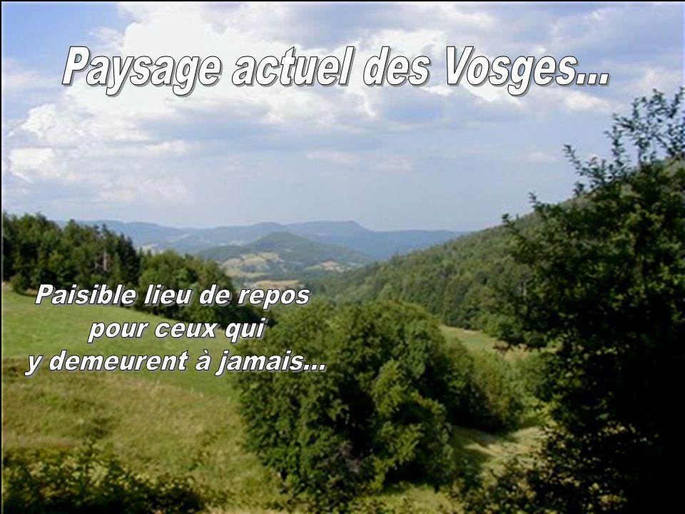 Paysage actuel des Vosges...