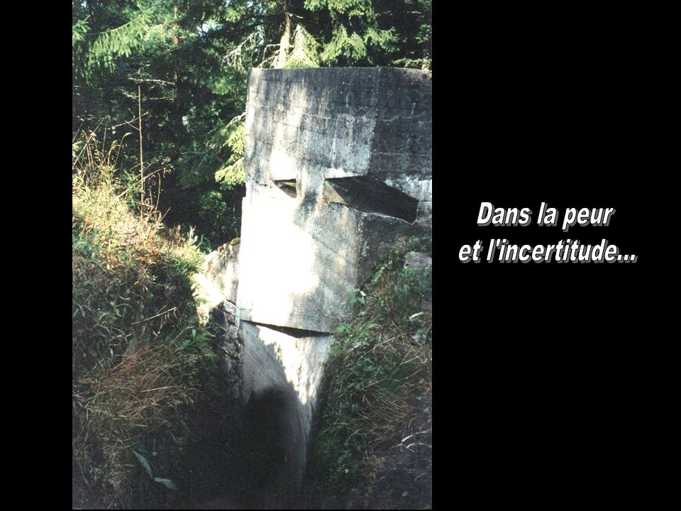 Dans la peur et l incertitude...