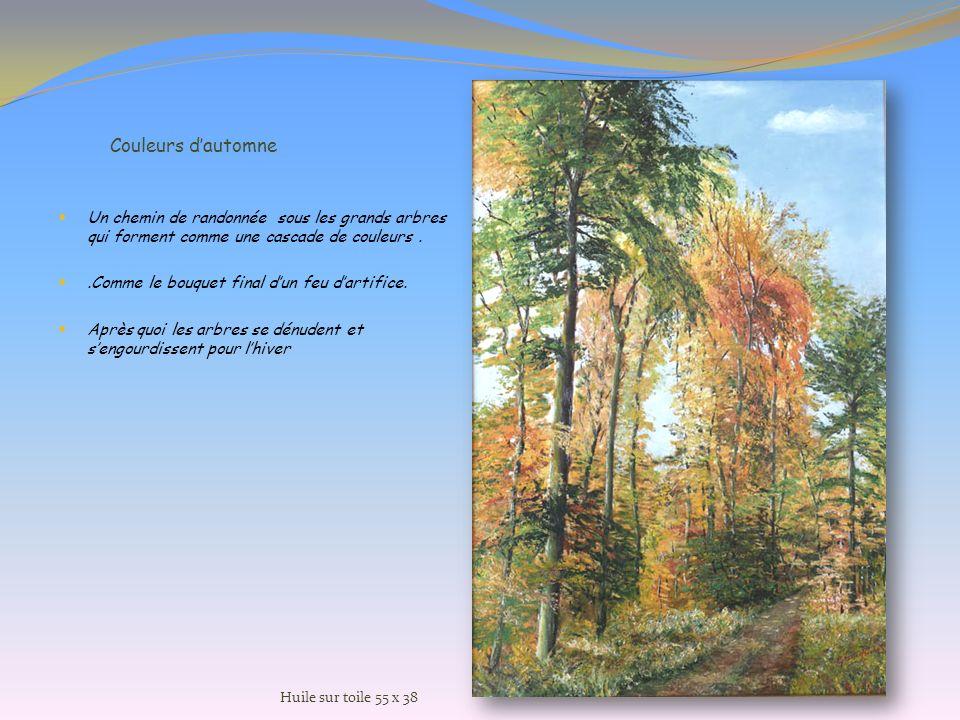Couleurs d'automne Un chemin de randonnée sous les grands arbres qui forment comme une cascade de couleurs .