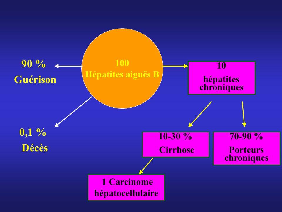 1 Carcinome hépatocellulaire
