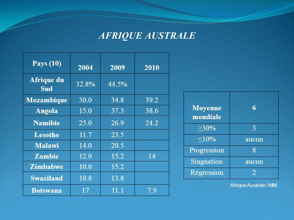 Afrique Australe Pays (10) 2004 2009 2010 Afrique du Sud 32.8% 44.5%