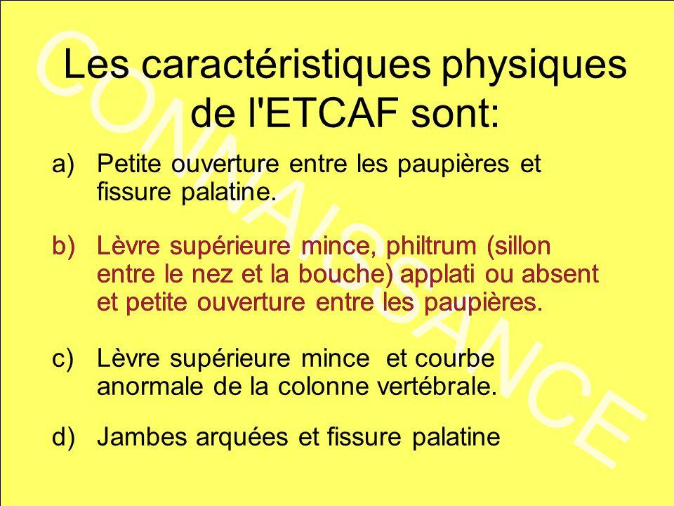 Les caractéristiques physiques de l ETCAF sont: