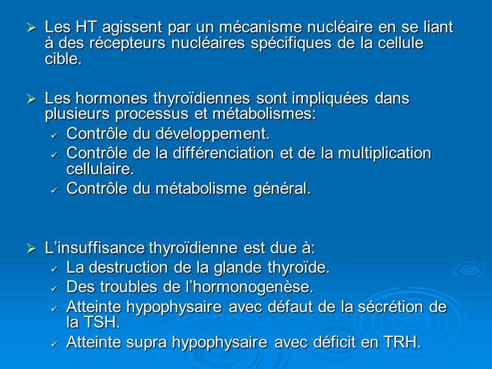 Les HT agissent par un mécanisme nucléaire en se liant à des récepteurs nucléaires spécifiques de la cellule cible.