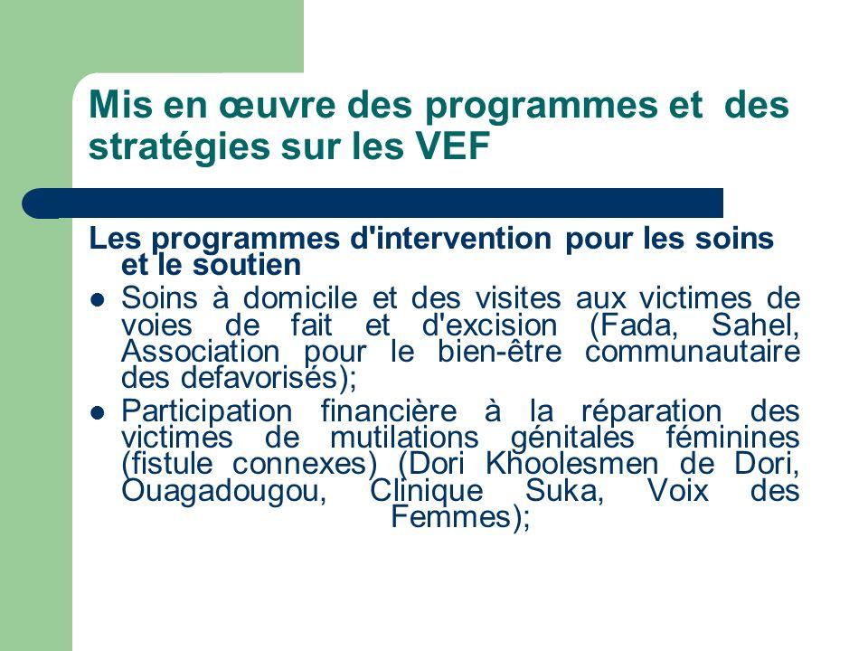 Mis en œuvre des programmes et des stratégies sur les VEF