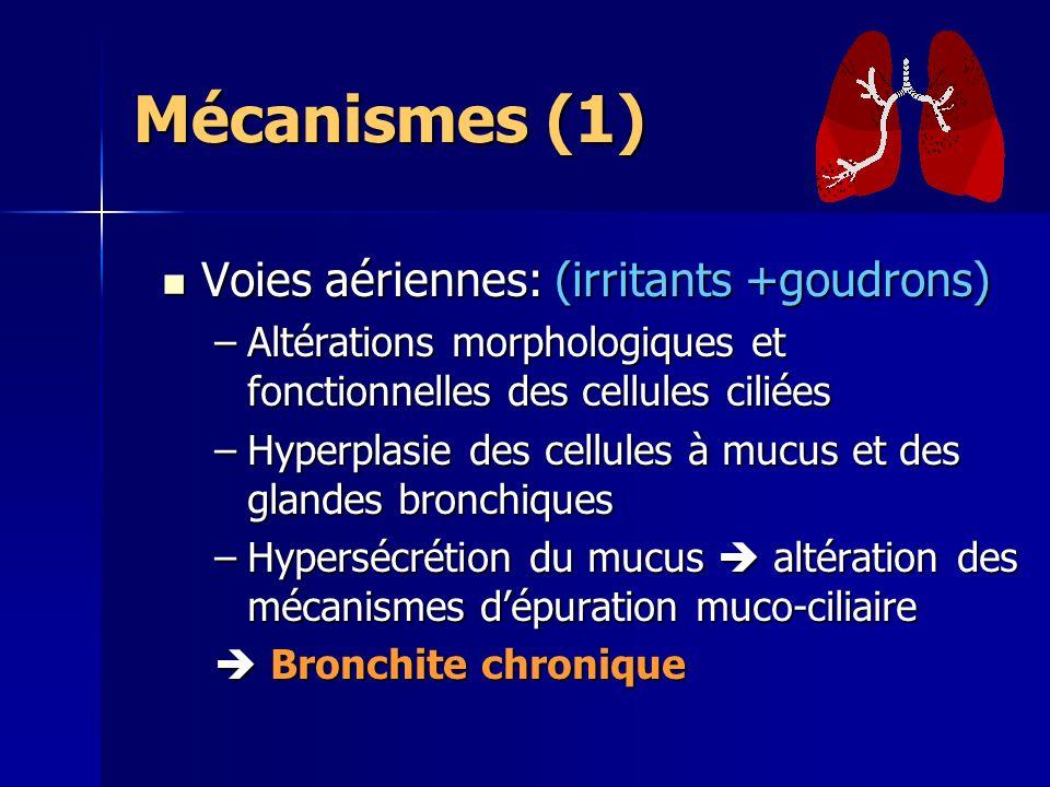 Mécanismes (1) Voies aériennes: (irritants +goudrons)