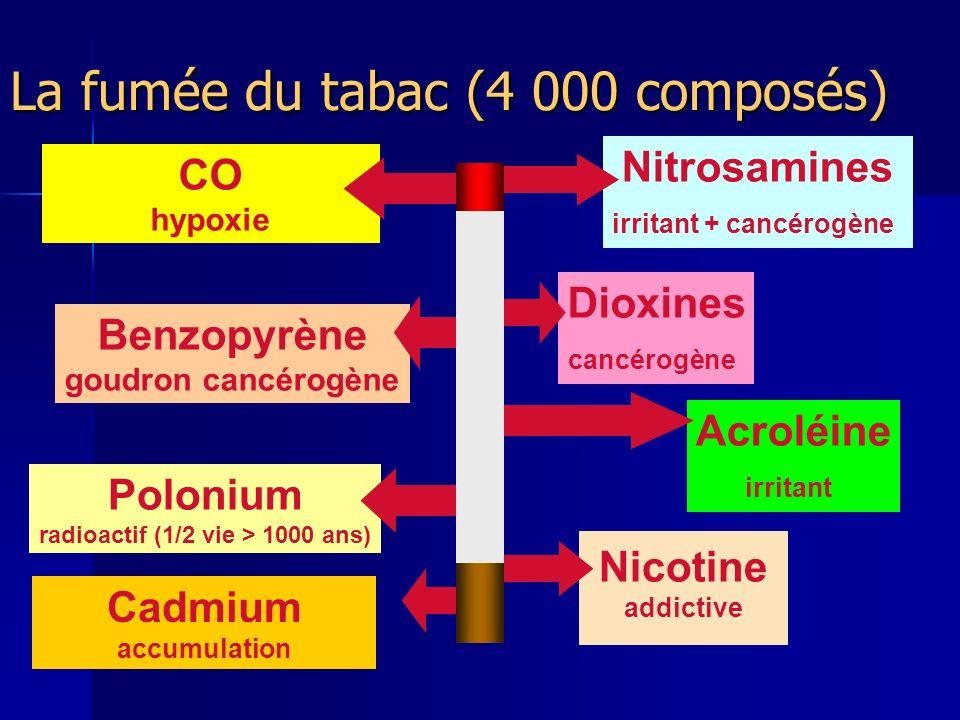 La fumée du tabac (4 000 composés)