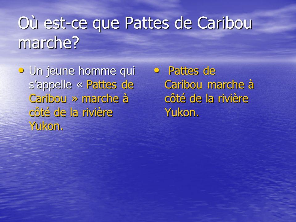 Où est-ce que Pattes de Caribou marche