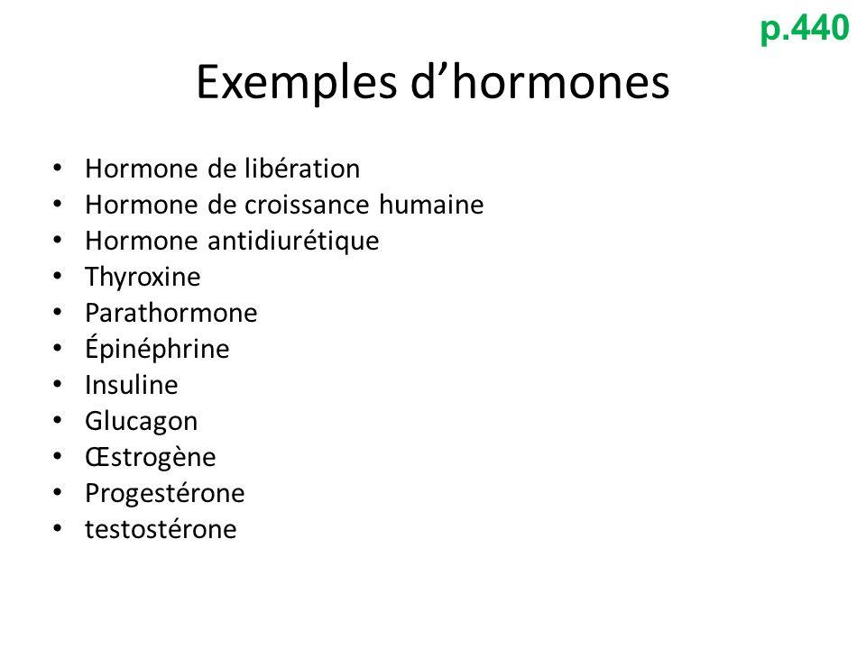 Exemples d'hormones p.440 Hormone de libération