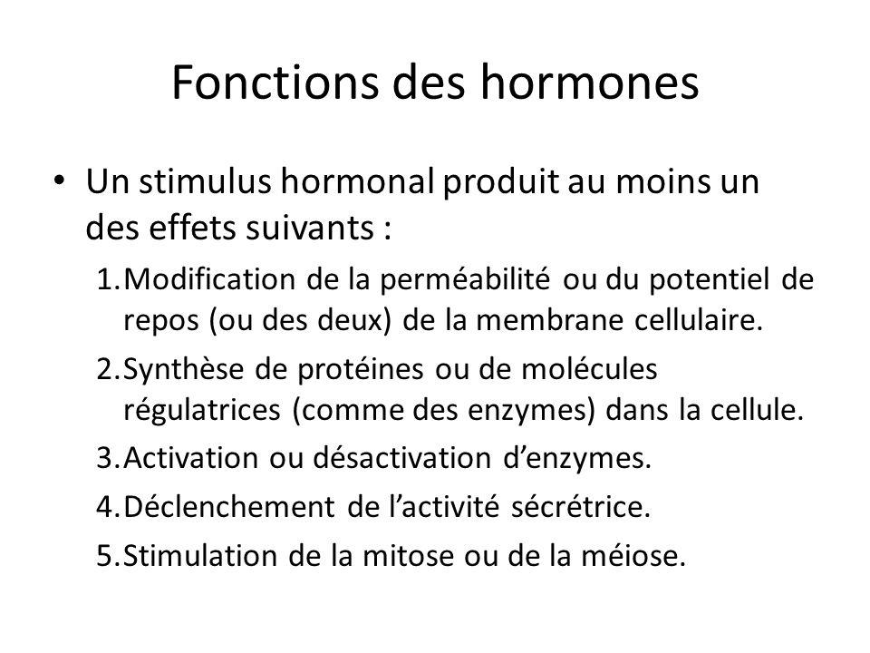Fonctions des hormones