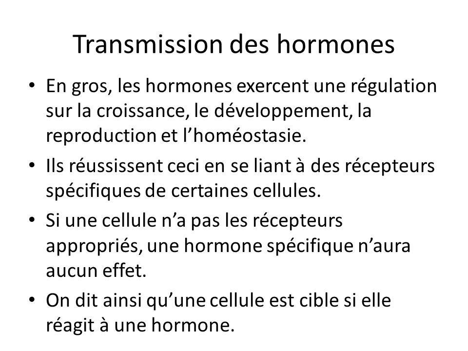 Transmission des hormones