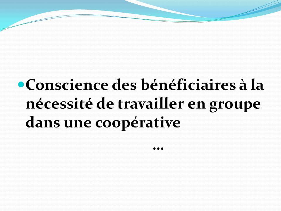Conscience des bénéficiaires à la nécessité de travailler en groupe dans une coopérative