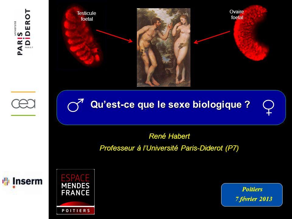 Qu'est-ce que le sexe biologique