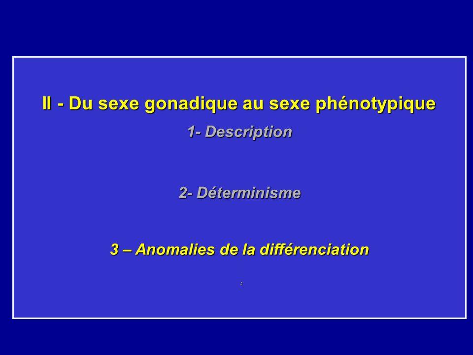 II - Du sexe gonadique au sexe phénotypique