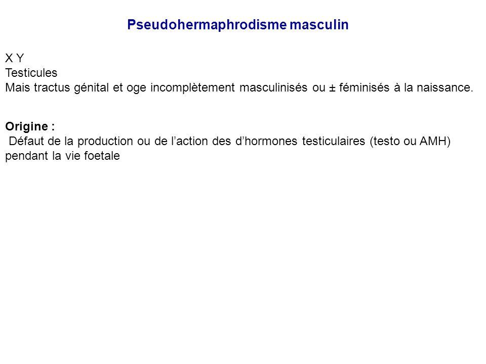 Pseudohermaphrodisme masculin