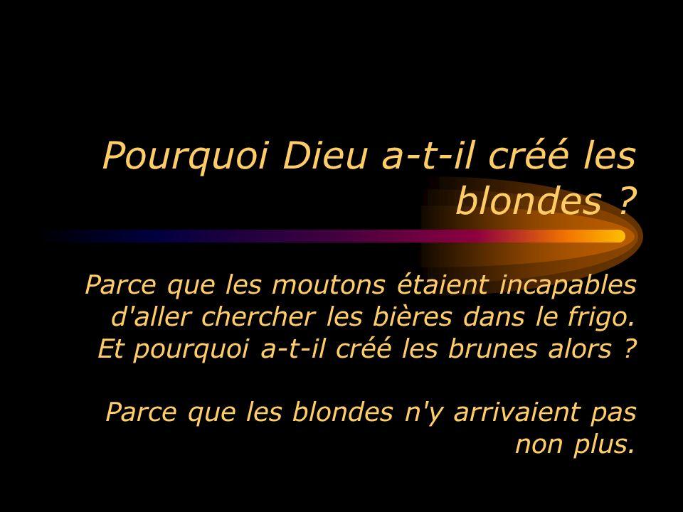 Pourquoi Dieu a-t-il créé les blondes