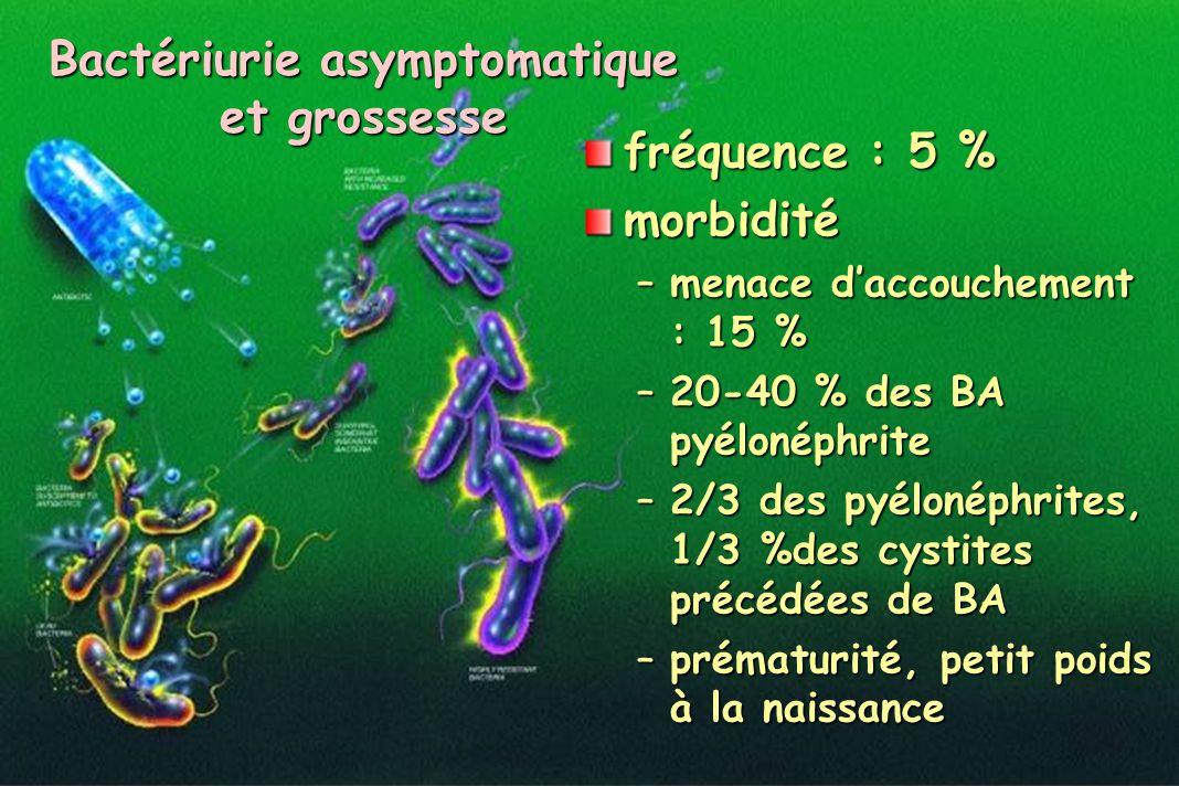 Bactériurie asymptomatique et grossesse
