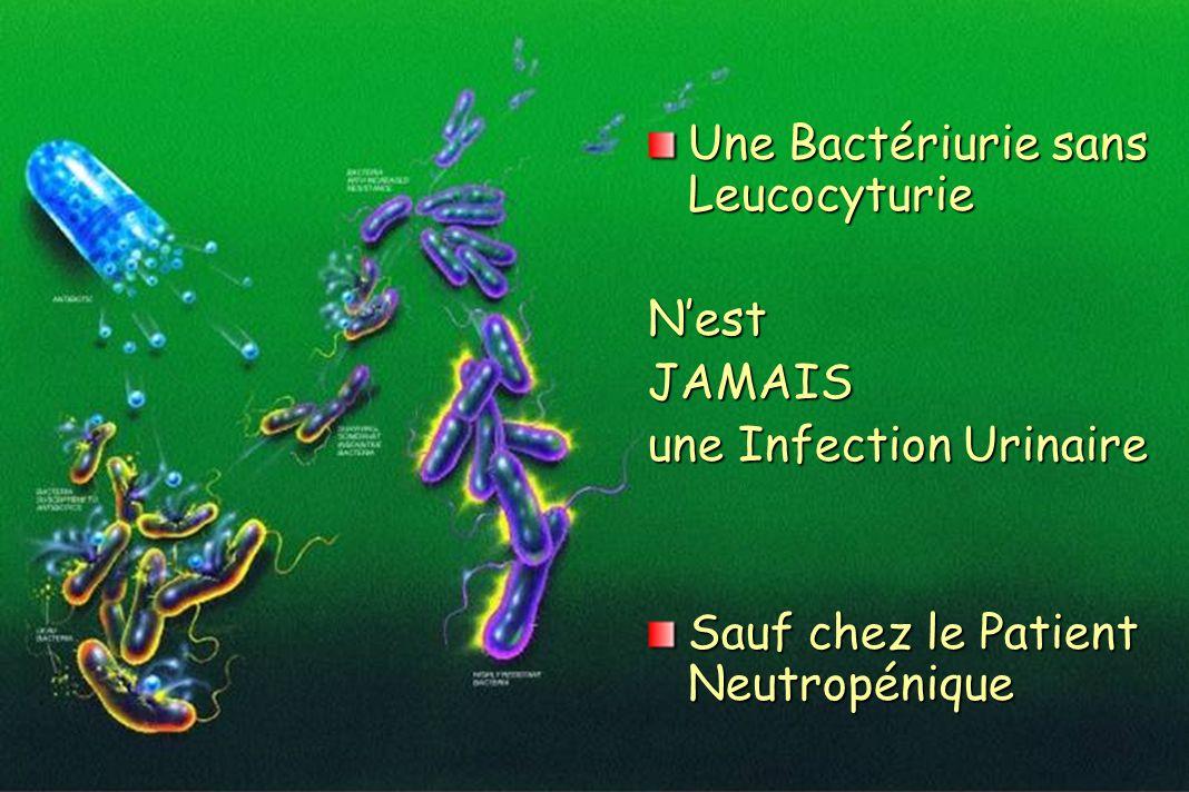 Une Bactériurie sans Leucocyturie