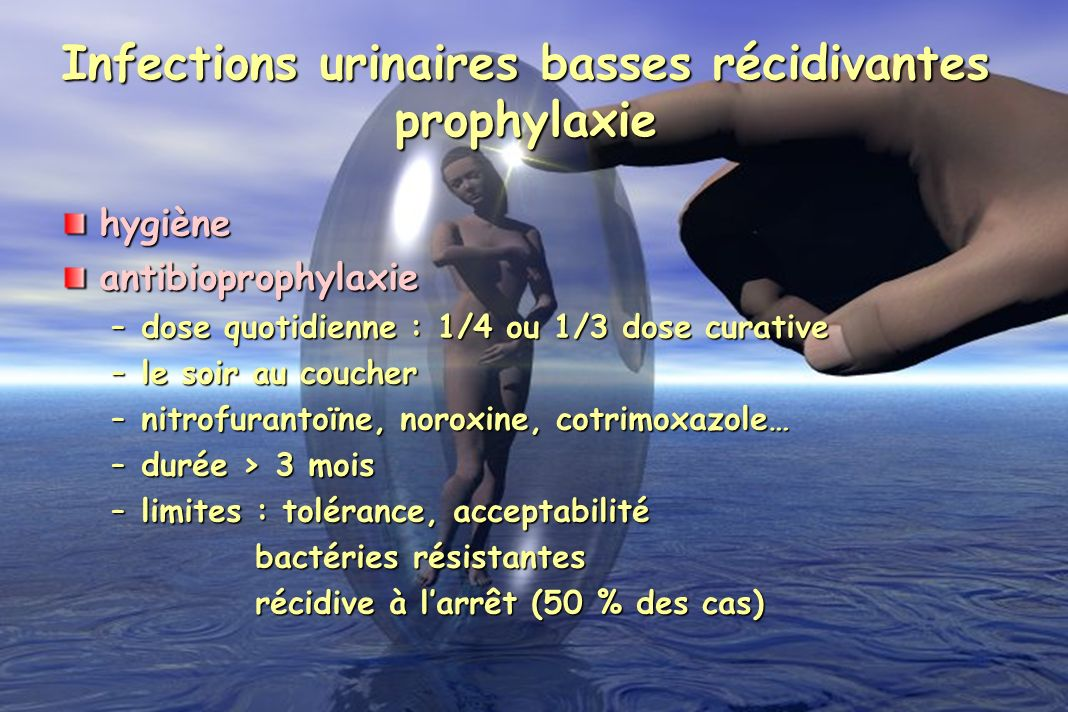 Infections urinaires basses récidivantes prophylaxie