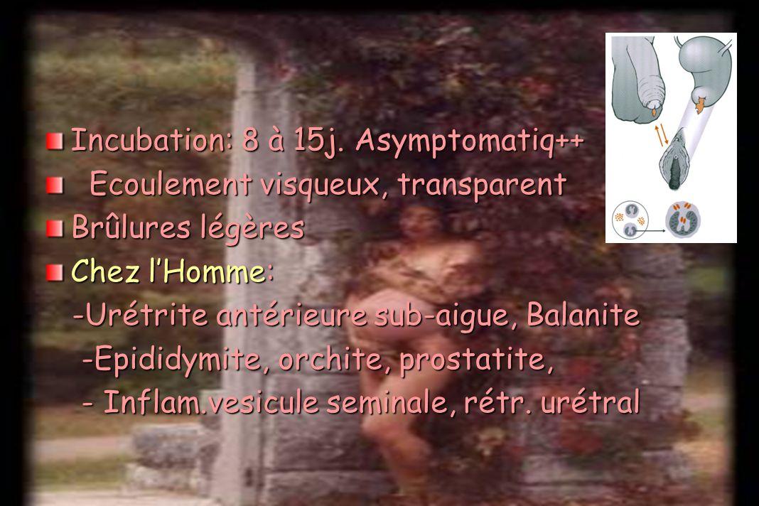 Incubation: 8 à 15j. Asymptomatiq++
