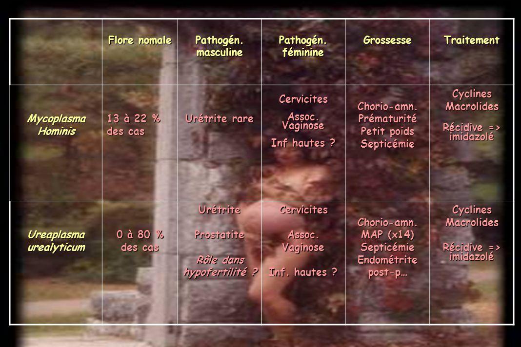 Ureaplasma urealyticum Rôle dans hypofertilité