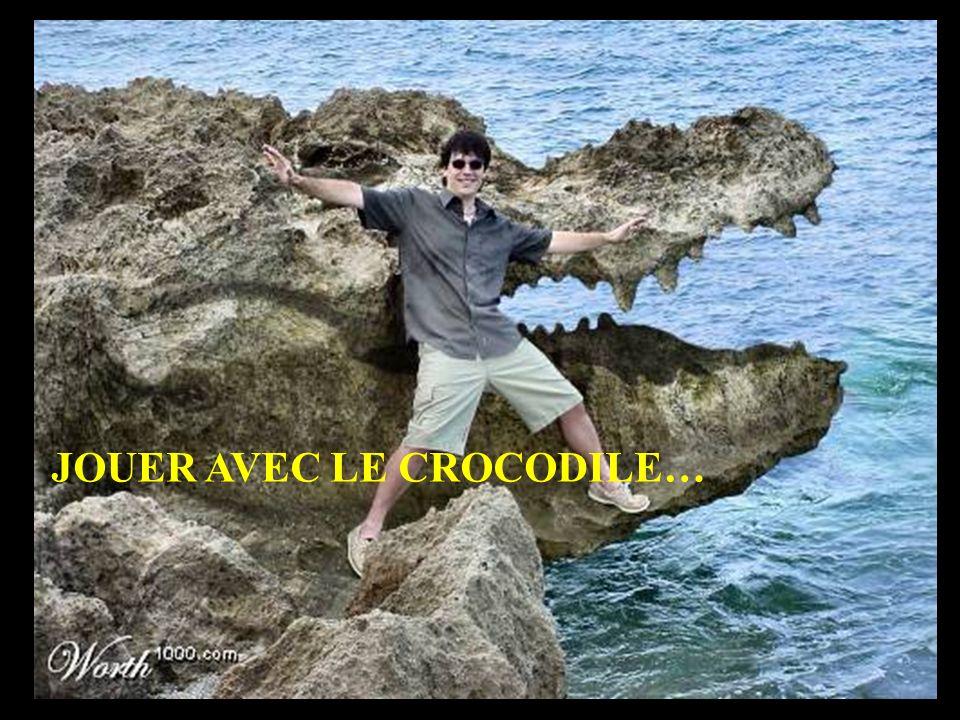 JOUER AVEC LE CROCODILE…