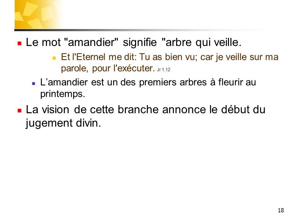 Le mot amandier signifie arbre qui veille.