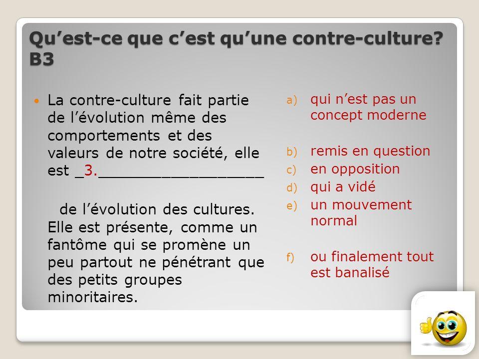 Qu'est-ce que c'est qu'une contre-culture В3