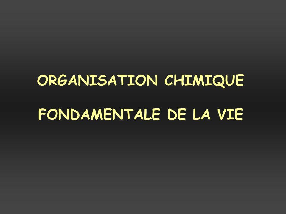 ORGANISATION CHIMIQUE FONDAMENTALE DE LA VIE