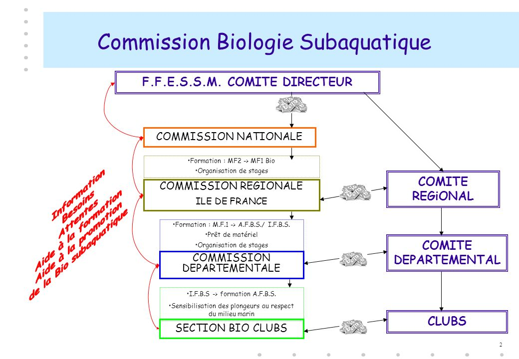 Commission Biologie Subaquatique