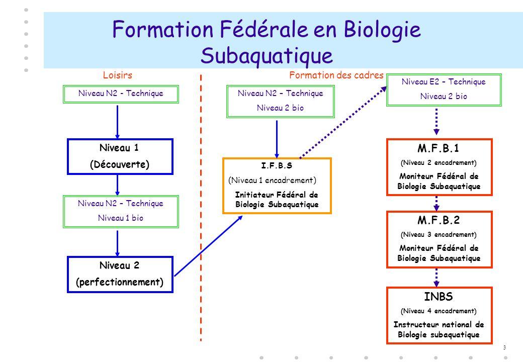 Formation Fédérale en Biologie Subaquatique