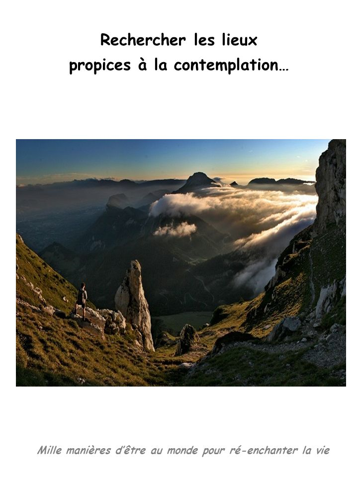 propices à la contemplation…