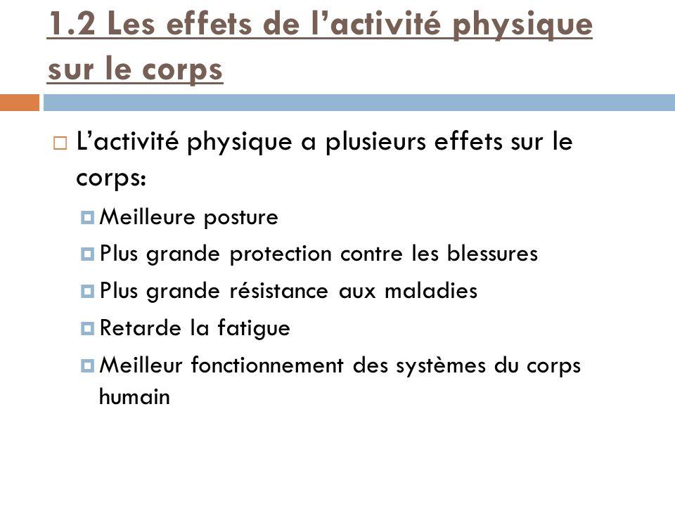 1.2 Les effets de l'activité physique sur le corps