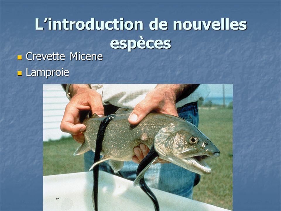L'introduction de nouvelles espèces