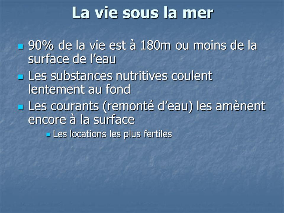 La vie sous la mer 90% de la vie est à 180m ou moins de la surface de l'eau. Les substances nutritives coulent lentement au fond.