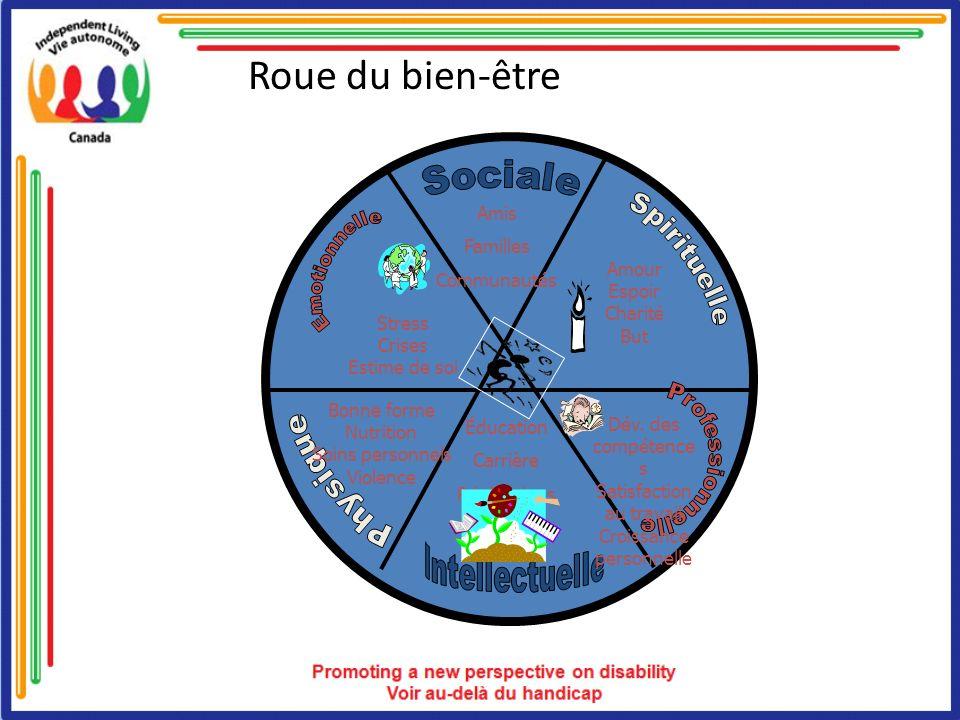 Roue du bien-être Sociale Emotionnelle Spirituelle Professionnelle
