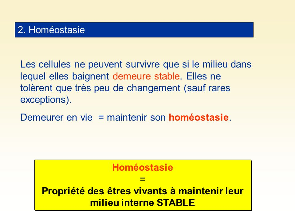2. Homéostasie
